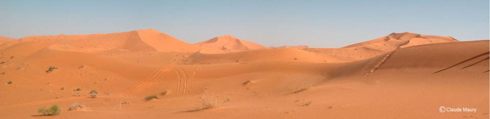 Horizon-dunes
